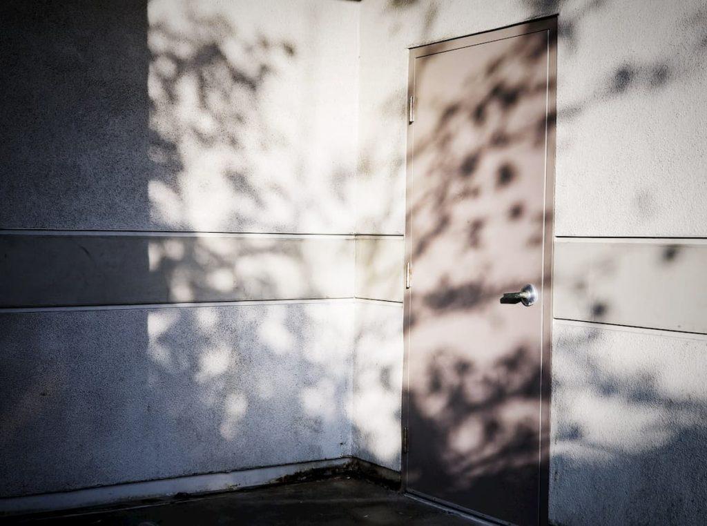 Business steel entry door